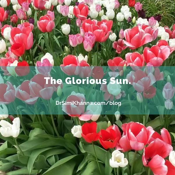 The Glorious Sun.
