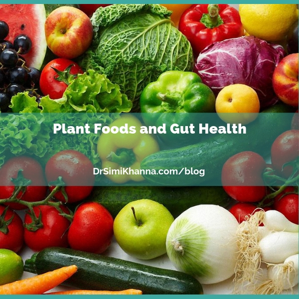 Plant Foods and Gut Health